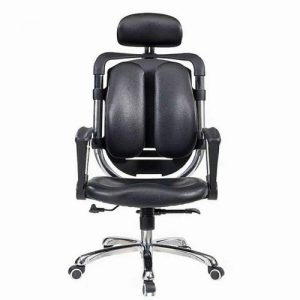 Executive Ergonomic Office Chair